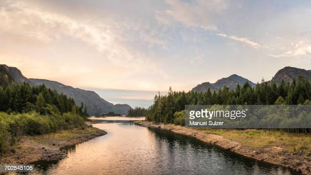 forest, lake and mountain landscape at dusk, strathcona-westmin provincial park, vancouver island, british columbia, canada - vancouver island stock pictures, royalty-free photos & images