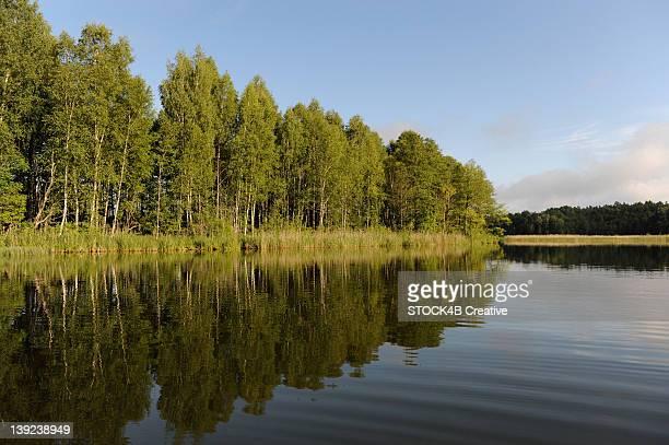 Forest lake near Krutynia, Masuria, Poland