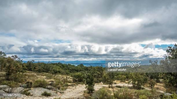 forest landscape with cloudy sky - salamanca imagens e fotografias de stock