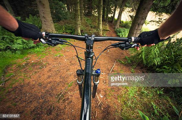 Forest Mountainbiking