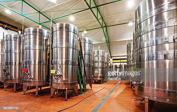 Forêt de fermentation tanks au vignoble moderne