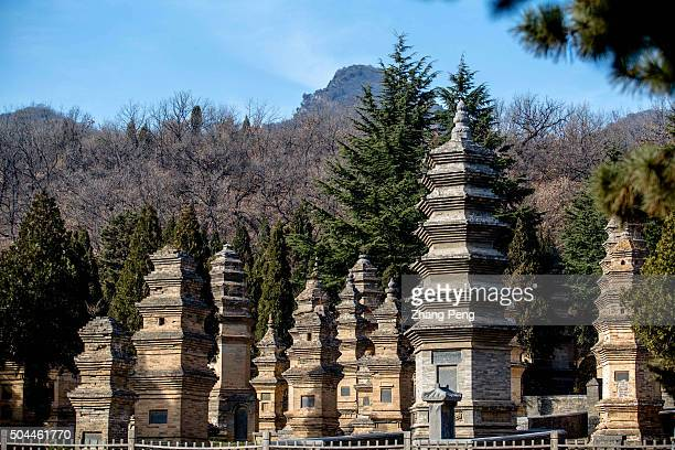 Forest of Pagodas Yard built before 791 It has 240 tomb pagodas of various sizes from the Tang Song Jin Yuan Ming and Qing dynasties The Shaolin...