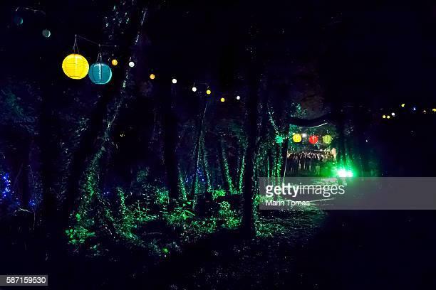 forest party - bunte festival night stock-fotos und bilder