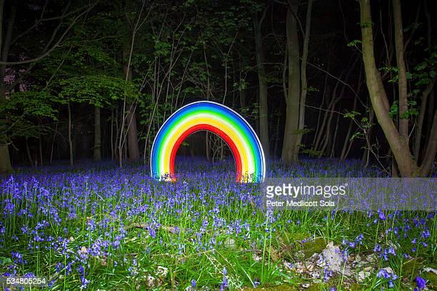 forest rainbow light painting - grafite produção artística - fotografias e filmes do acervo