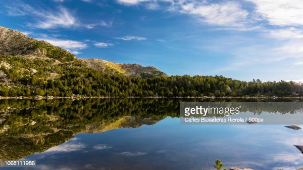 forest reflected in lake - catalonia stock pictures, royalty-free photos & images