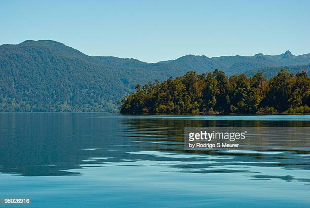 forest reflecting on a lake - petrohue river stock photos and pictures