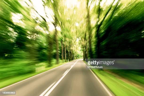 forest road-Geländetouren