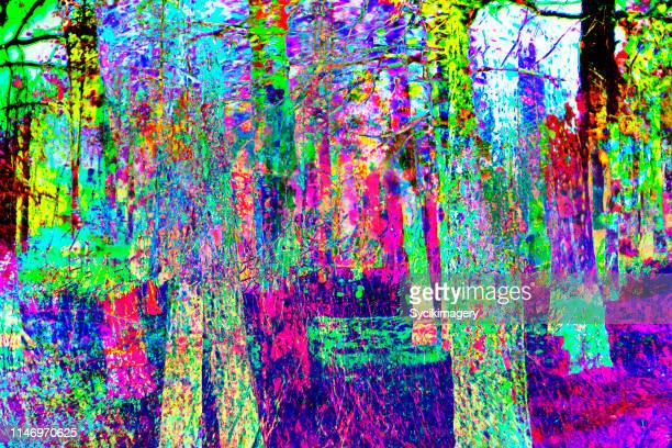 forest scene- glitch effect - saturated color stock pictures, royalty-free photos & images