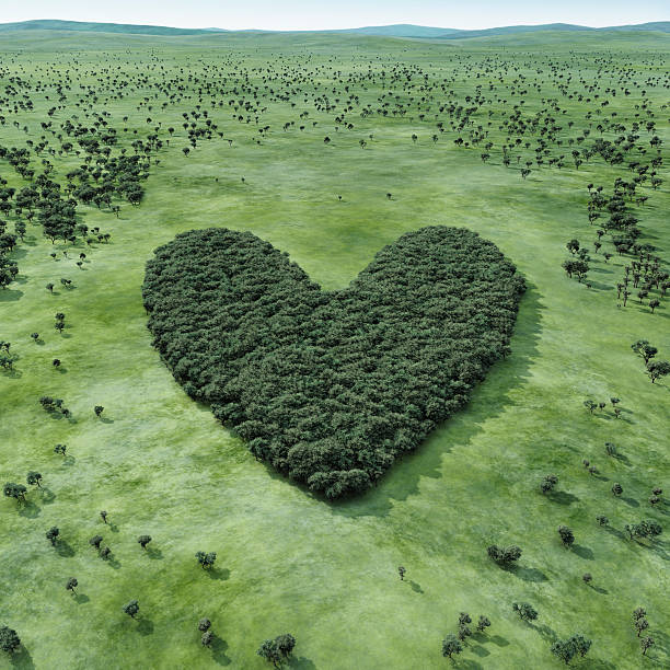Forest Shaped Heart Wall Art