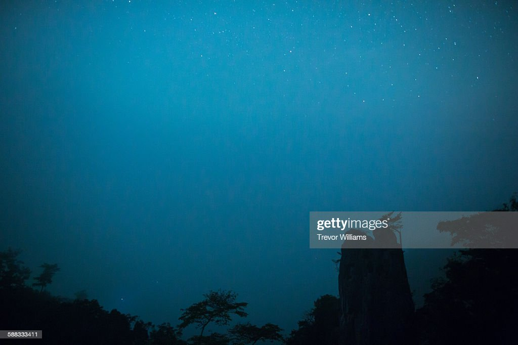 A forest silhouetted against fog and a starry sky : Stock Photo