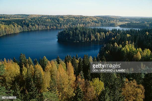 A forest surrounding a lake near Turku aerial view Finland