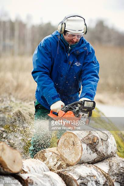 A forest worker cutting up a tree trunk Sweden.