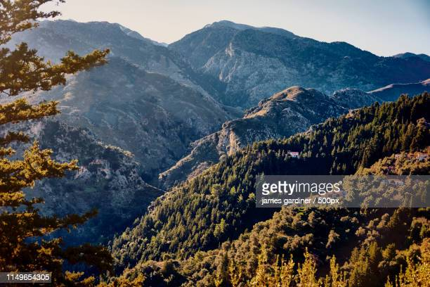 forested hillside high in the foothills of lefka o - latchi ストックフォトと画像