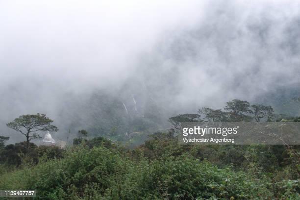a forested mountain valley near sri pada (adam's peak), sri lanka - argenberg stock-fotos und bilder