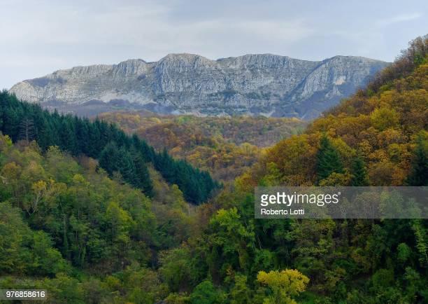 Forested mountains, Garfagnana, Italy