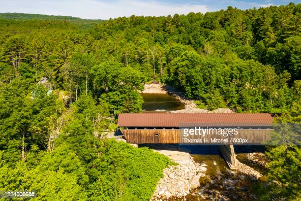 forestland with covered bridge on river, bath, new hampshire, usa - brook mitchell fotografías e imágenes de stock