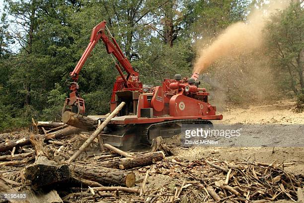 Forestry officials use a trackmounted wholetree chipper to clear the forest of thousands of trees killed by beetles July 23 2003 near Idyllwild...
