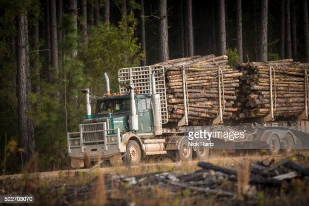 Forestry plantation transportation