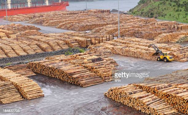 Forestry, Wood Industry
