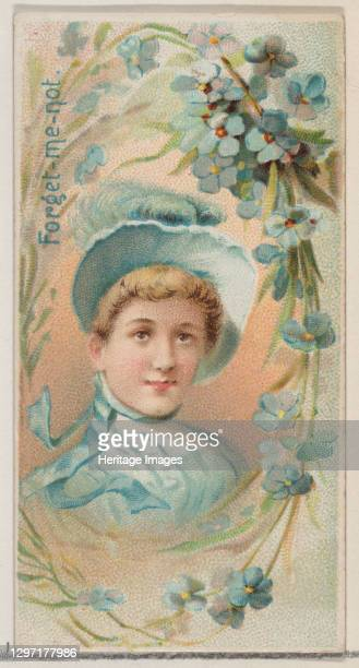 Forget-Me-Not, from the series Floral Beauties and Language of Flowers for Duke brand cigarettes, 1892. Artist Donaldson Brothers.