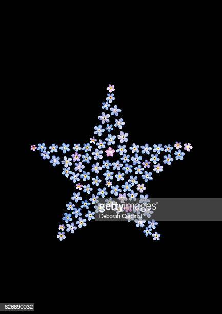Forget-me-not Star