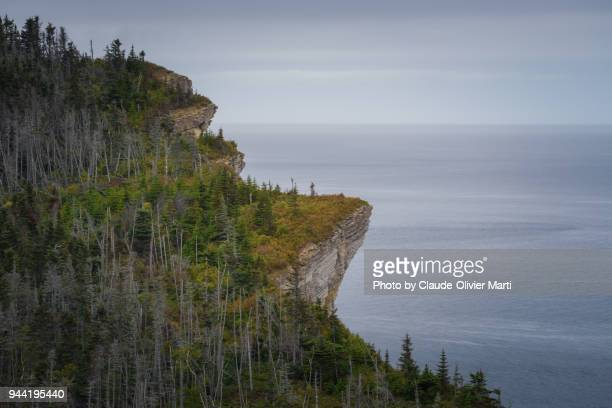 forillon national park, gaspésie, canada - forillon national park stock pictures, royalty-free photos & images