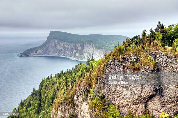 forillon national park - gaspe peninsula stock pictures, royalty-free photos & images