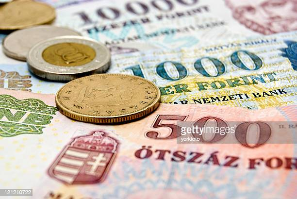 forint - traditionally hungarian stock pictures, royalty-free photos & images
