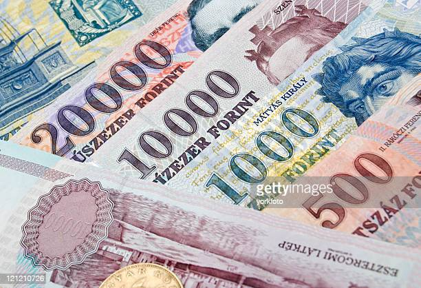forint - hungary stock pictures, royalty-free photos & images