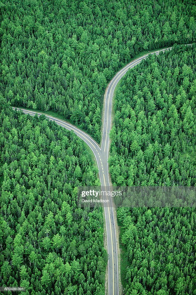 Fork in road through forest, aerial (Digital Composite) : Stock Photo