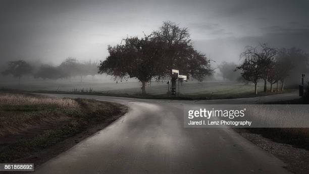a fork in the road on a foggy country morning - crossroad stock pictures, royalty-free photos & images