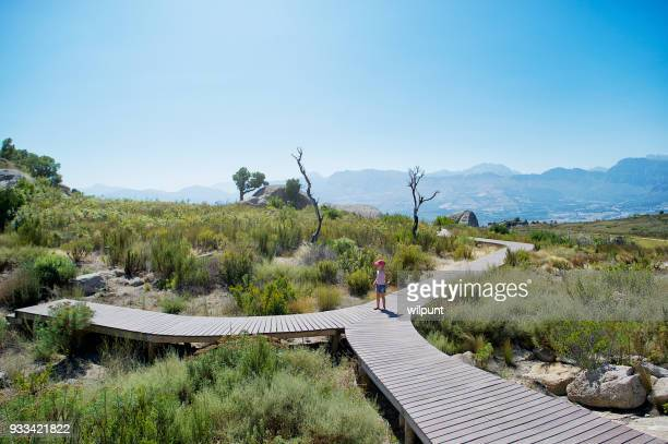 a forked walk way crossroad for young girl with cap - forked road stock pictures, royalty-free photos & images