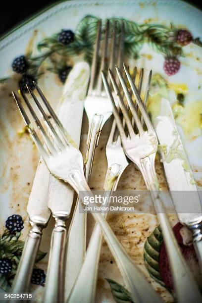 Forks and knifes on plate before dishes
