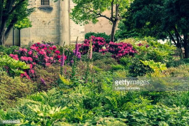 formal garden with multiple flowers