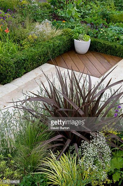 Formal paving with mixed planting