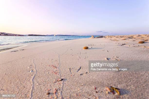 formentera coastline idyllic beach at sunset in balearic islands, spain - elysium photos et images de collection
