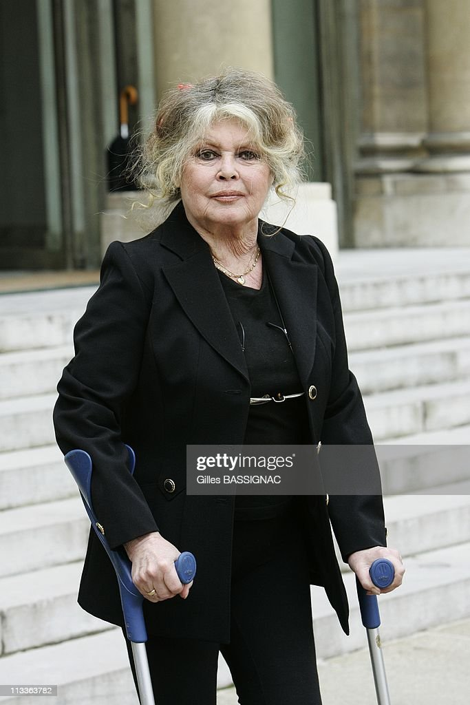Former actress and now animals rights activist Brigitte Bardot invited for a meeting on the environment with French President Nicolas Sarkozy, at the Elysee Palace In Paris, France On September 27, 2007. : News Photo