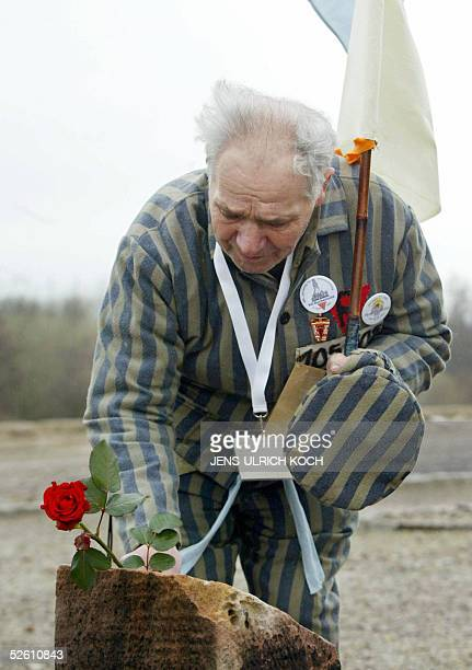Former Buchenwald concentration camp inmate Petro Mischtschuk from the Ukraine lays a flower on a memorial during ceremonies to mark the 60th...