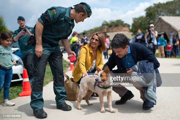 Former French prime minister and candidate to become Barcelona's next mayor Manuel Valls caresses a Spanish civil guard dog at the Montjuic Castle on...