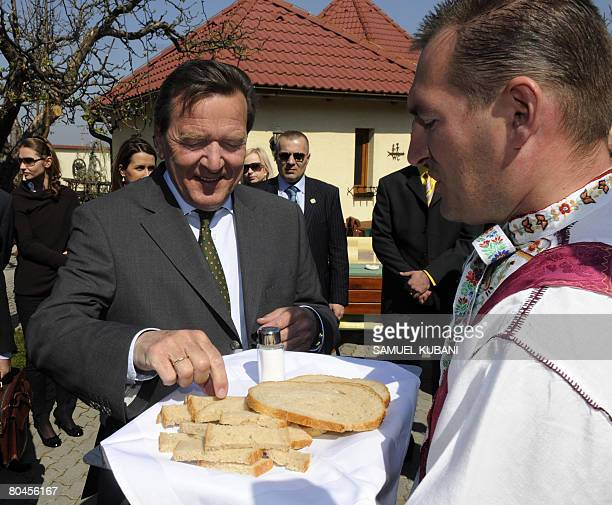Former German Chancellor Gerhard Schroeder tastes traditional bread and salt as he arrives on April 01 2008with Slovak Prime Minister Robert Fico in...
