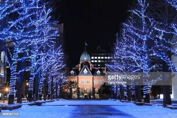 former hokkaido government office building - sapporo stock pictures, royalty-free photos & images