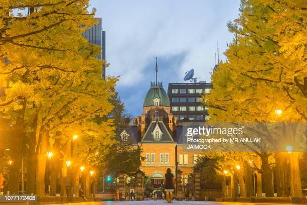 former hokkaido government office in autumn, japan - sapporo - fotografias e filmes do acervo