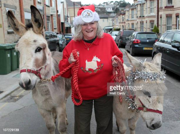 Former Home Office Minister Ann Widdecombe leads donkeys Teasel and Dove for a photocall at the launch of the Christmas campaign to save donkeys in...