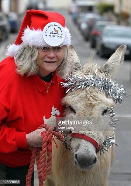 Former Home Office Minister Ann Widdecombe poses for a photograph with Dove the donkey at the launch of the Christmas campaign to save donkeys in the...