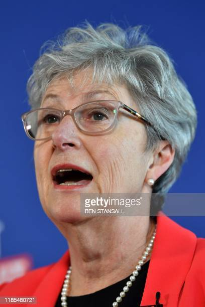 Former Labour MP and former chair of the Vote Leave campaign group Gisela Stuart takes part in a press conference in London on November 29 2019...