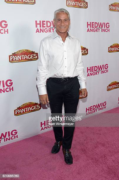 Former Olympic diver Greg Louganis attends the opening night of Hedwig And The Angry Inch at the Pantages Theatre on November 2 2016 in Hollywood...