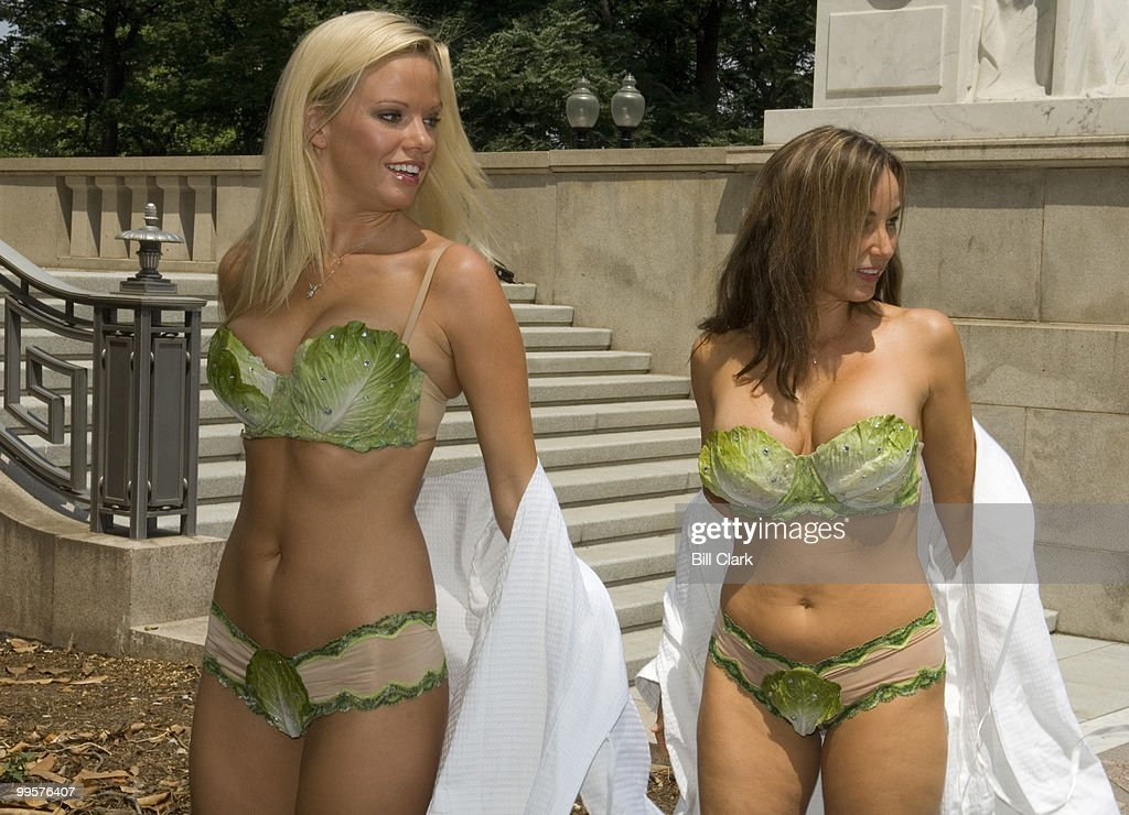 Former Playboy Playmates Lauren Anderson, left, and Laura Guttridge, shed their robes before serving veggie dogs during the People for the Ethical Treatment of Animals Annual Capitol Hill Veggie Dog Giveaway outside of the Rayburn House Office Building on Wednesday, July 18, 2007.