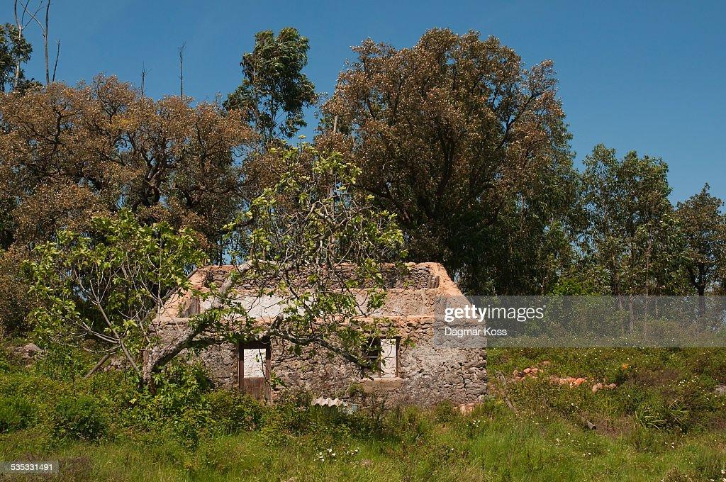 Former Portuguese farmhouse ruin : ストックフォト