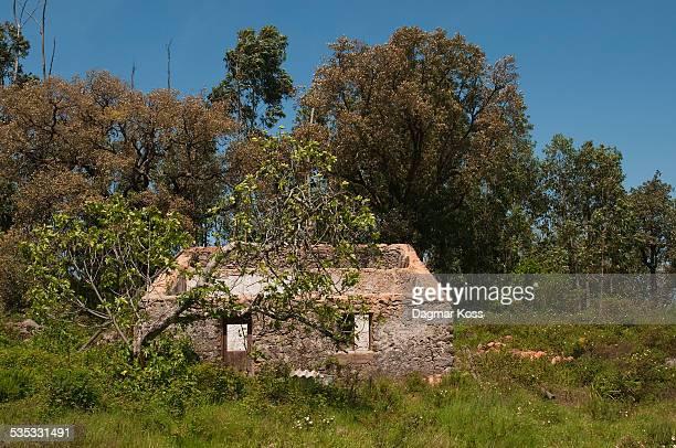 former portuguese farmhouse ruin - モンシケ ストックフォトと画像