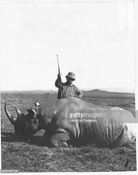 Former president Theodore Roosevelt poses with a bull rhinoceros he killed on an African savanna